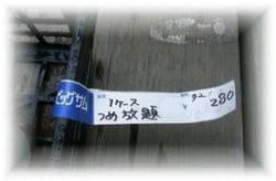 Tsumehoudai300fadeout